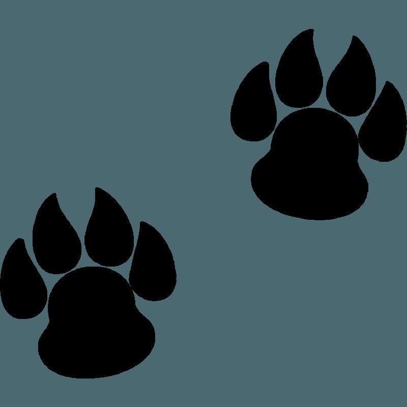 Huellas Animal - Vinilowcost