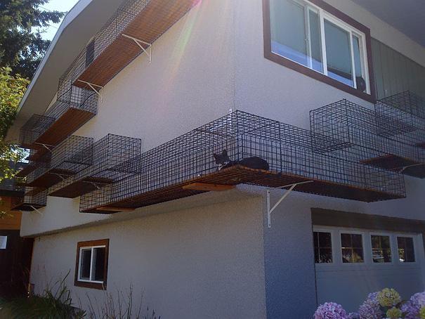 Estructura divertida para gatos